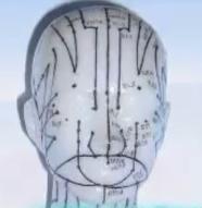 meridiany akupunkturne v tvari