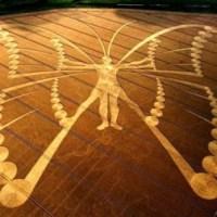 Transformačné príznaky a motýlí ľudia