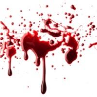 Krvné skupiny a povahy ľudí